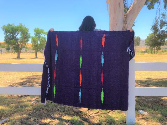thunderbird-blanket-purple-scaled